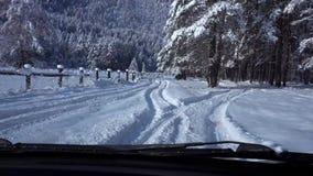 Grondez en la voiture par la forêt couverte de neige, 4k banque de vidéos
