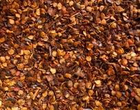 Grondspaanse peper stock afbeelding