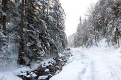 Grondweg in het de winterbos royalty-vrije stock fotografie