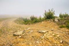 Grondweg in mist Stock Fotografie