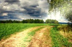 Grondweg tussen een berkboom en een landbouwgebied De zomer landelijke aard Plattelandslandschap, zonlicht, bewolkte hemel Royalty-vrije Stock Afbeeldingen