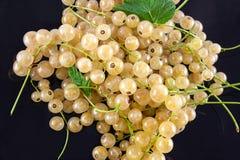 Grono białe jagody Fotografia Royalty Free