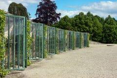 Gronowe szklarnie w Potsdam, Niemcy fotografia royalty free