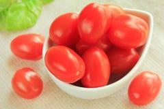 gronowi pomidory Obraz Stock