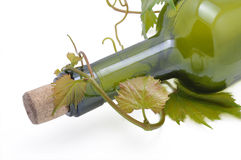 gronowy butelka winograd Zdjęcia Stock