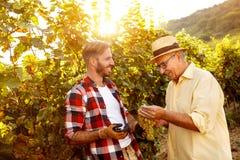 Gronowy ojciec i syn pracuje przy winnicą Fotografia Stock