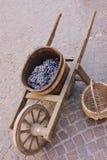 gronowy stary wheelbarrow Obraz Stock