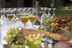 gronowy stołowy wino obraz royalty free