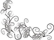 gronowy tło winograd royalty ilustracja