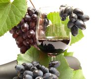 gronowy wino Obrazy Royalty Free