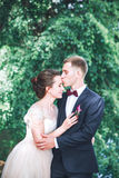 Groom и невеста совместно обнимать пар венчание сбора винограда дня пар одежды счастливое Красивая невеста и элегантный groom идя Стоковое Изображение RF