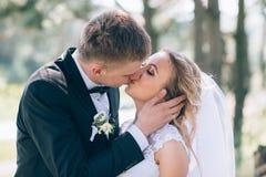 Groom и невеста совместно ювелирные изделия cravat пар кристаллические связывают венчание Стоковые Фото
