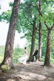 Groom и невеста совместно Wedding романтичные пары внешние стоковые изображения rf
