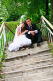 Groom и невеста. Чувство нежности влюбленности пар свадьбы Стоковые Изображения RF