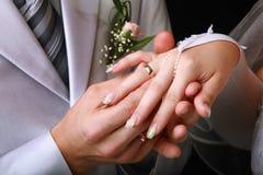 groom кладет кольцо Стоковые Изображения RF