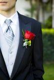 groom корсажа Стоковое фото RF