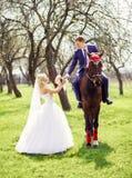 Groom на лошади дает букет невесты весной, яблоко Стоковые Изображения RF