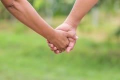 groom невесты вручает держать совместно 2 Концепция помощи или поддержки На зеленом bl Стоковая Фотография RF