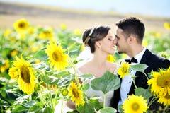 groom невесты напольный стоковая фотография rf