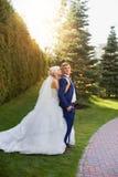 Groom невесты нежно обнял плеча Стоковые Фото