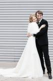 groom невесты Стоковые Фотографии RF