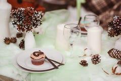 groom невесты outdoors wedding зима Стоковые Фотографии RF