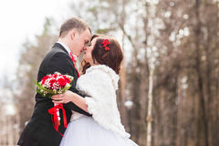 groom невесты outdoors wedding зима groom невесты напольный Стоковое Изображение