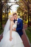 Groom нежно обнимает плеча ` s невесты стоковая фотография rf