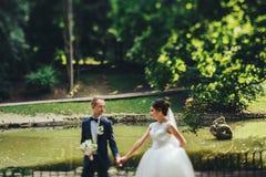 Groom смотрит невесту идя с ей вдоль берега озера Стоковое фото RF