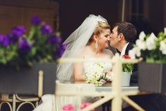 Groom целует нос невесты на таблице кафа Стоковые Изображения RF