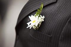 groom Стоковая Фотография RF