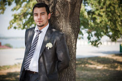Groom Royalty Free Stock Photography