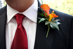 groom 2 Стоковые Фотографии RF