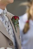 Groom. With rose Royalty Free Stock Images