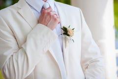 groom Imagens de Stock