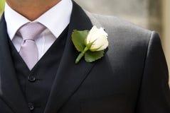 groom Стоковые Изображения