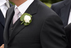 groom Стоковое фото RF