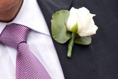 groom Стоковое Изображение RF
