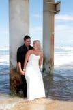 groom 6 невест Стоковая Фотография