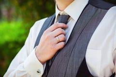 groom fotografia de stock royalty free