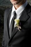 Groom. WEARING BOUTONNIERE ON WEDDING DAY Royalty Free Stock Photos
