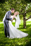 Groom bending over bride and kissing her Royalty Free Stock Photo