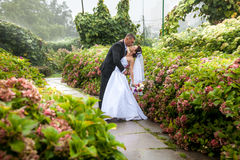 Groom bending over bride at park Royalty Free Stock Photography