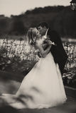 Groom bends bride over and kisses her standing on the road.  Royalty Free Stock Photography