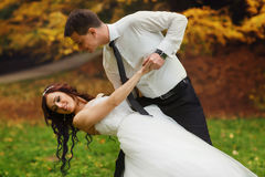 Groom bends bride over standing on the lawn in a park Royalty Free Stock Images