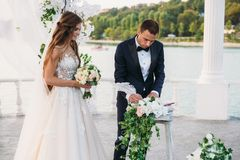 The groom in a black jacket and white shirt with a bow-tie on a wedding day puts a signature near the arch with a lake. On background. Newlyweds stands together Stock Photography