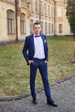 The groom in a blue suit and bow tie posing in the photo. Groom in blue suit with atlas bow Stock Photos