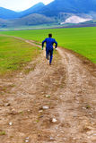 Groom in blue suit running away with beer bottles on a field path. royalty free stock photography