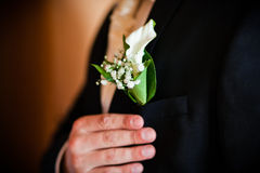 Groom with the boutonniere Stock Photo