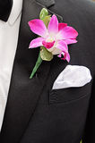Groom Boutonniere. A pink orchid bridegroom boutonniere on a tuxedo stock images